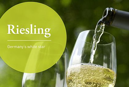 Riesling - Germany's white star